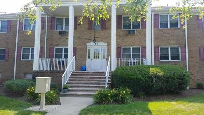 Freehold Condo/Townhouse Under Contract: 84 Manchester Court #A