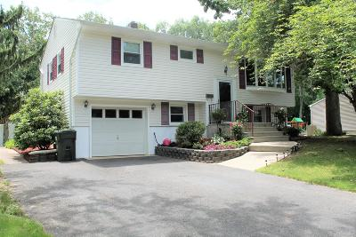 Howell Single Family Home For Sale: 25 Nottingham Drive