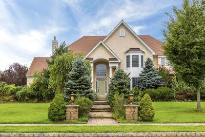Freehold Single Family Home For Sale: 1 Chadsford Lane