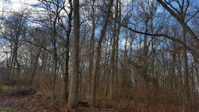 Residential Lots & Land For Sale: 59 Oakland Avenue