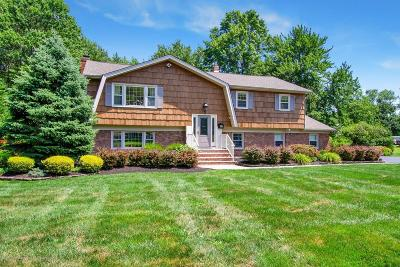 Monmouth County Single Family Home For Sale: 3 Copperfield Court