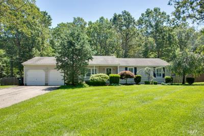 Jackson Single Family Home For Sale: 181 White Road