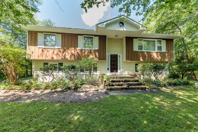 Freehold Single Family Home For Sale: 358 Jackson Mills Road