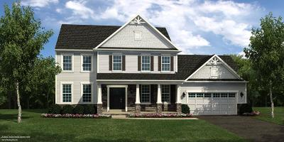 Freehold Single Family Home For Sale: 520 Derose Lane