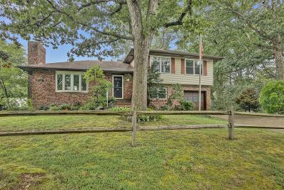 Toms River Single Family Home For Sale: 927 Raleigh Drive