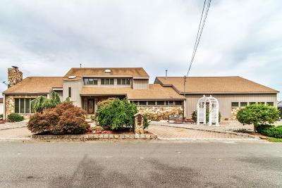 Ocean County Single Family Home For Sale: 423 Cedar Drive