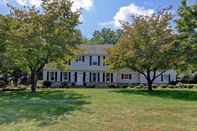 Holmdel Single Family Home For Sale: 25 Randall Road