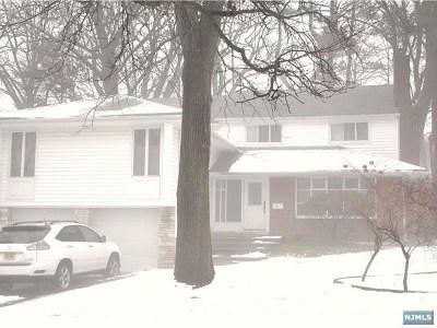Tenafly Single Family Home For Sale: 193 Elm Street