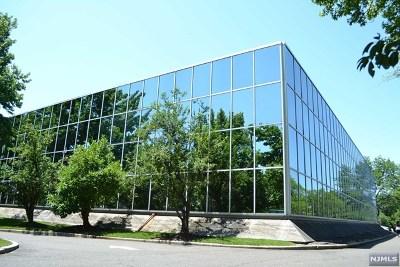 Englewood Cliffs Commercial For Sale: 400 Sylvan Avenue