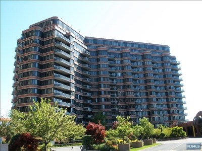 Cliffside Park Condo/Townhouse For Sale: 100 Winston Drive #11b-N