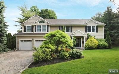 Tenafly Single Family Home For Sale: 107 Hudson Avenue