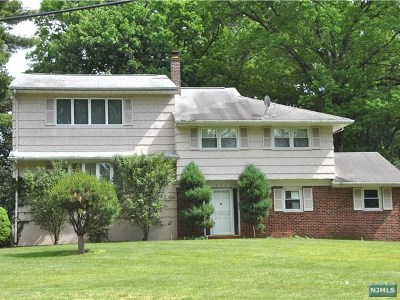 Cresskill Single Family Home For Sale: 430 Lafayette Street