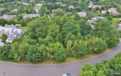 Cresskill NJ Residential Lots & Land For Sale: $1,590,000