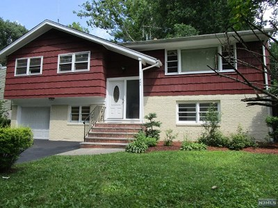 New Milford Single Family Home For Sale: 445 West Park Drive