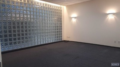 Tenafly Commercial For Sale: 82 North Summit Street
