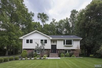 Cresskill Single Family Home For Sale: 132 Hillside Avenue