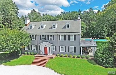 Ho-Ho-Kus Single Family Home For Sale: 873 East Saddle River Road