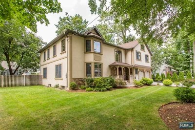 Cresskill Single Family Home For Sale: 463 12th Street