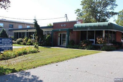 Englewood Cliffs Commercial For Sale: 610 East Palisade Avenue