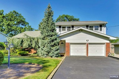 Englewood Cliffs Single Family Home For Sale: 350 Elisa Drive