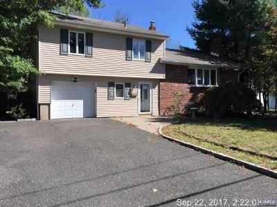 Cresskill Single Family Home For Sale: 58 Pierce Avenue