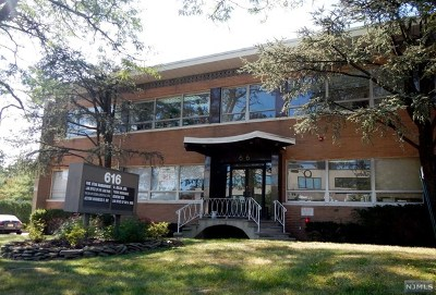 Englewood Cliffs Commercial For Sale: 616 East Palisade Avenue
