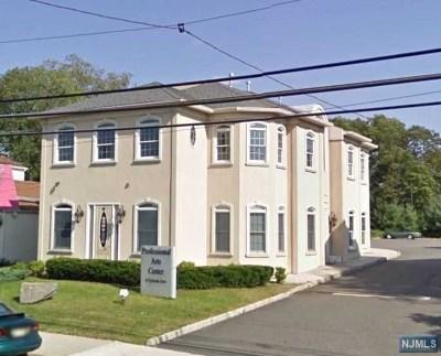 Englewood Cliffs Commercial For Sale: 6 Sylvan Avenue