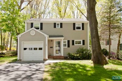 Tenafly Single Family Home For Sale: 48 Buff Road