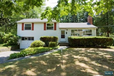 Cresskill Single Family Home For Sale: 62 Willis Avenue