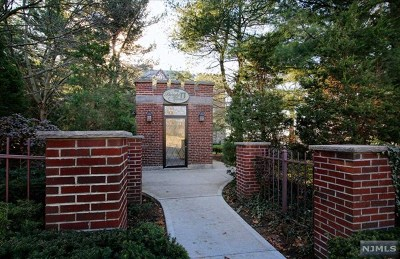 Englewood Condo/Townhouse For Sale: 100 East Palisade Avenue #D41