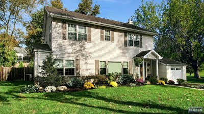 Tenafly Single Family Home For Sale: 28 Louise Lane