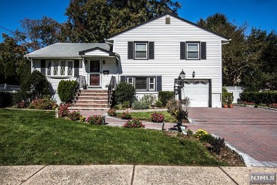 New Milford Single Family Home For Sale: 300 McKinley Avenue