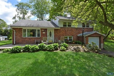 Ramsey Single Family Home For Sale: 296 South Franklin Turnpike
