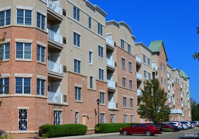 Englewood Condo/Townhouse For Sale: 1313 Windsor Park Court