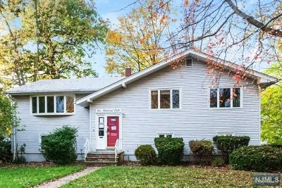 New Milford Single Family Home For Sale: 508 Hughes Road