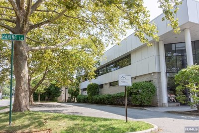 Tenafly Commercial For Sale: 64 North Summit Street