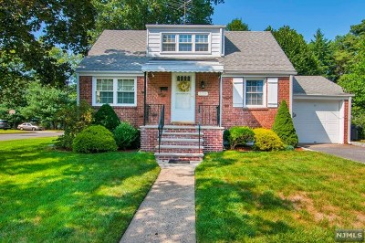 New Milford Single Family Home For Sale: 179 River Lane