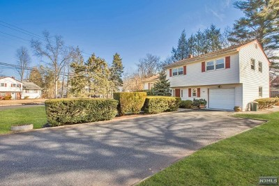 Cresskill Single Family Home For Sale: 424 Grant Avenue