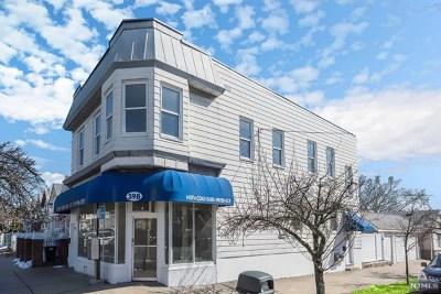 Hudson County Multi Family 2-4 For Sale: 398 Davis Avenue
