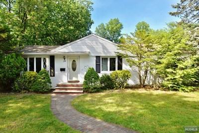 River Edge Single Family Home For Sale: 224 Van Saun Drive
