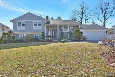 Englewood Cliffs Single Family Home For Sale: 31 Laurie Drive