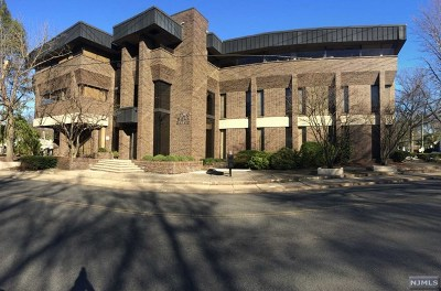 Tenafly Commercial For Sale: 2 Dean Drive
