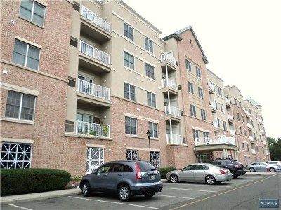 Englewood Condo/Townhouse For Sale: 1316 Windsor Park Court #316
