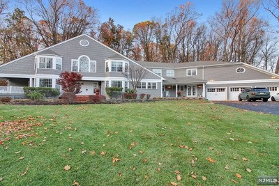 Randolph Township Single Family Home For Sale: 18 South Old Wood Lane