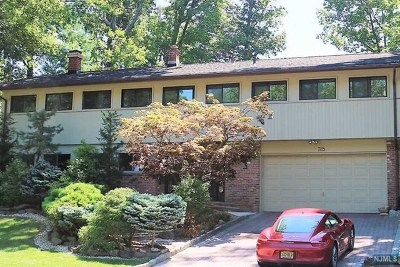 Englewood Cliffs Single Family Home For Sale: 285 Castle Drive