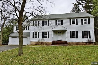 Tenafly Single Family Home For Sale: 141 Highwood Avenue
