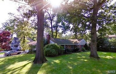 Cresskill Single Family Home For Sale: 180 Grant Avenue