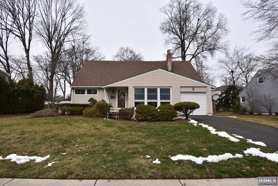 New Milford Single Family Home For Sale: 259 Greve Drive