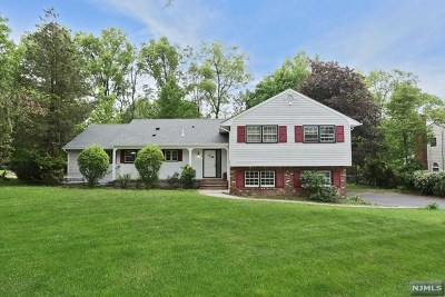 Tenafly Single Family Home For Sale: 58 Crabtree Lane