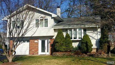 Cresskill Single Family Home For Sale: 162 4th Street